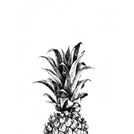 Tableau ANANAS BLACK AND WHITE