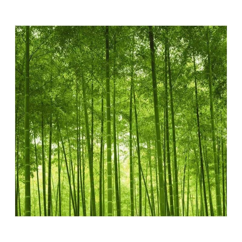 Papier peint zen tapisserie japonaise bambou et nature for Decoration murale nature