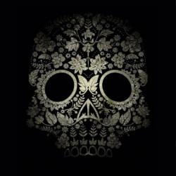 Skull and crossbones on black background