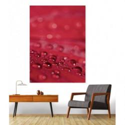 Tableau rouge gouttes d'eau
