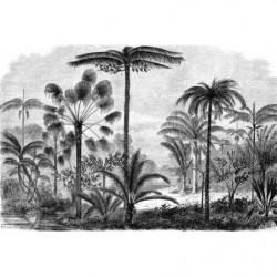 Papier peint paysage jungle en gravure noir et blanc