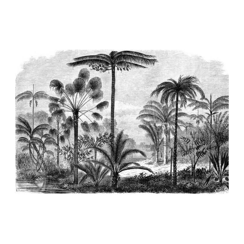 Papier Peint GRAVURE PALMIER