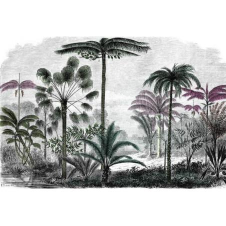 Papier Peint GRAVURE PALMIER COLORISÉE