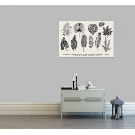 OLD HERBARY canvas print