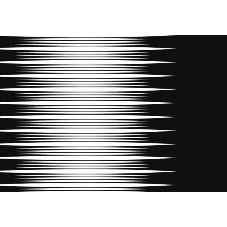 HYPNOGRAM canvas print