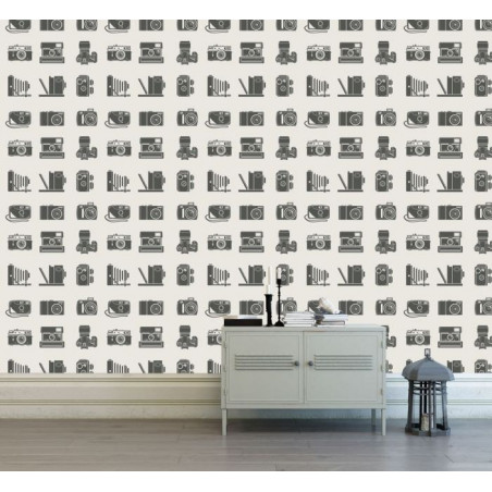 VINTAGE CAMERAS wallpaper