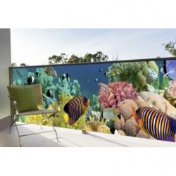 Brise vue poissons exotiques paysage sous marin