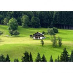 Tableau paysage chalet de montagne en été