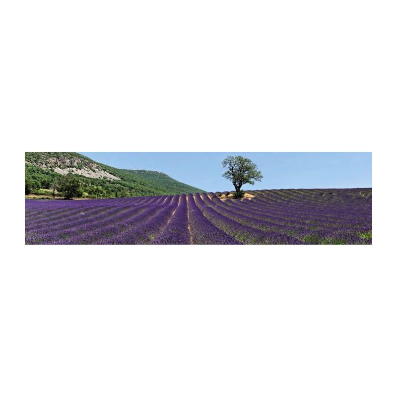 Häufig Brise vue lavande de la Provence pratique et rapide à installer SH37