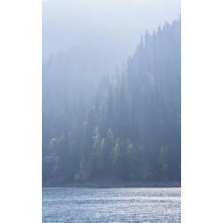Tenture LAKE IN FOG