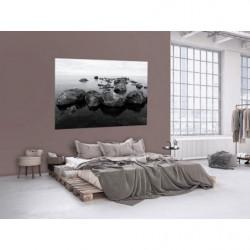 Póster gigante de un paisaje marino en blanco y negro