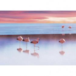 Tableau grand format paysage aux flamants roses