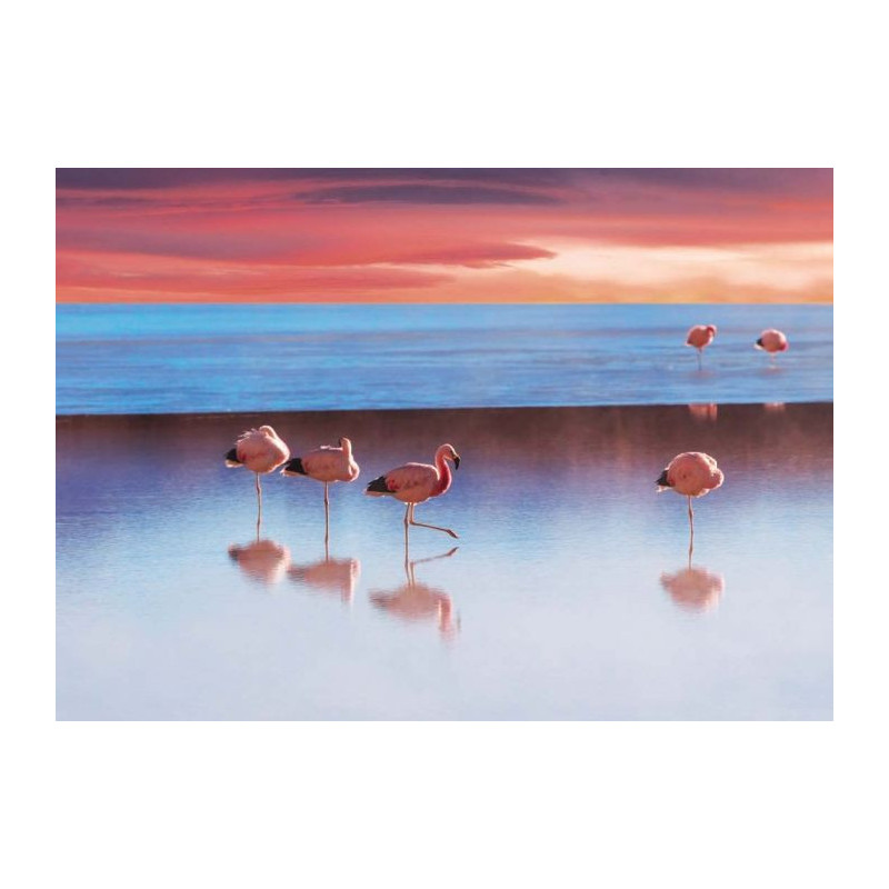 le lac aux flamants roses tableau plexi paysage sauvage. Black Bedroom Furniture Sets. Home Design Ideas