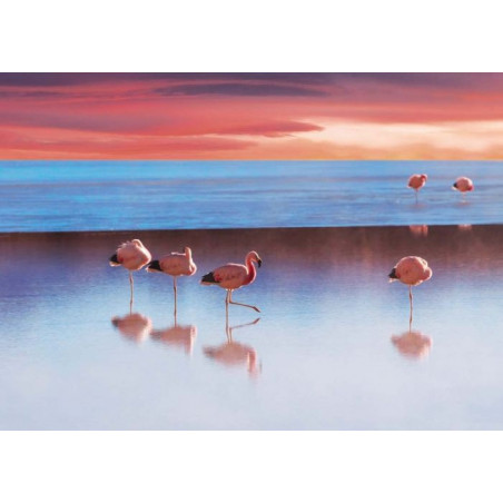 Poster LE LAC AUX FLAMANTS ROSES