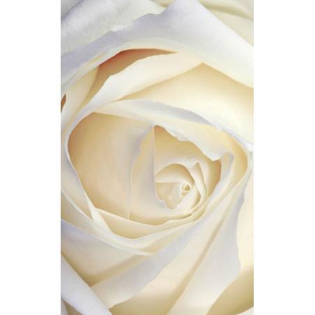 WHITE ROSE wall hanging
