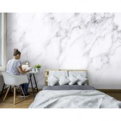 Papier peint arbre blanc