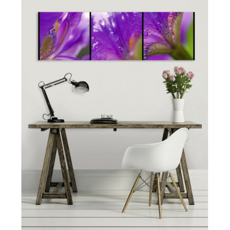 MESSAGERE canvas print