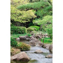 Papier peint zen rivière naturelle