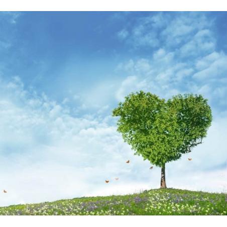 MY TREE HEART poster