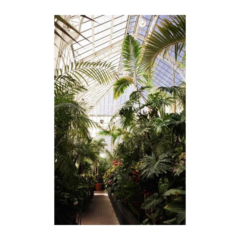 Au fond du jardin un trompe l 39 oeil ph m re pour votre for Au fond du jardin