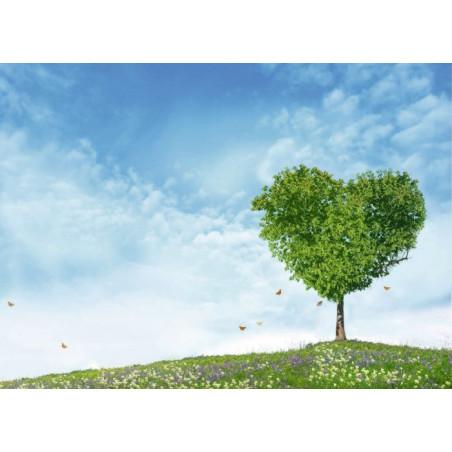 MY TREE HEART canvas print