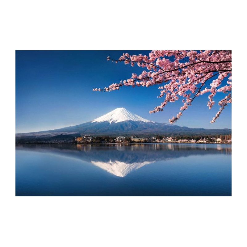 Mont fuji tableau grand format z nitude sous le cerisier for Porte zen fuji