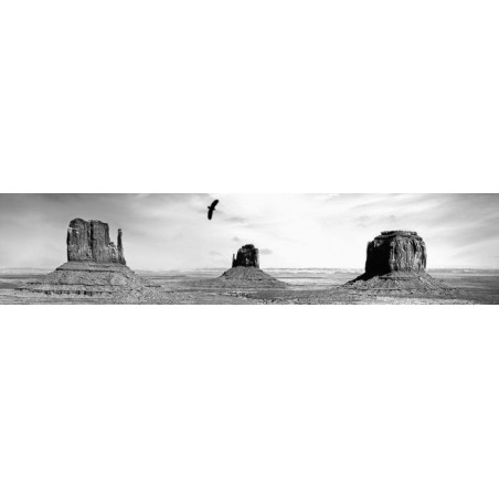MONUMENT VALLEY B&W poster