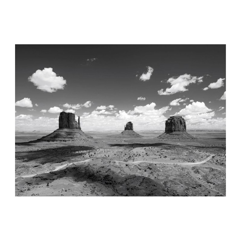 Tableau MONUMENT VALLEY NB
