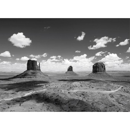 MONUMENT VALLEY NB canvas print