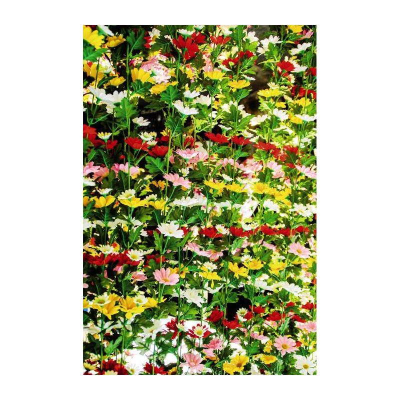 D Coration Color E Et Fleurie Avec Scenolia