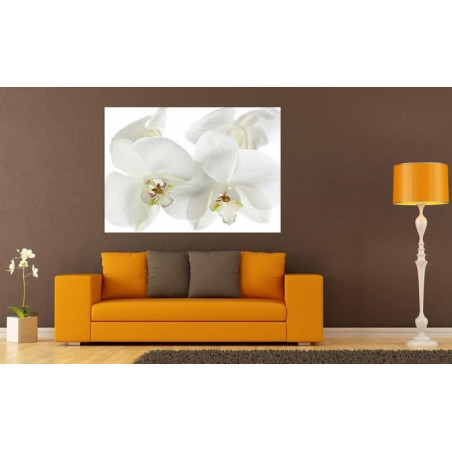 ORCHIDEE poster