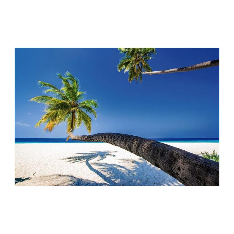 papier peint panoramique paysage de mer et de plage aux palmiers. Black Bedroom Furniture Sets. Home Design Ideas