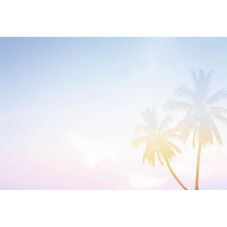 PALM TREES PASTEL  poster