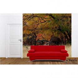 Papier peint paysage de forêt en automne
