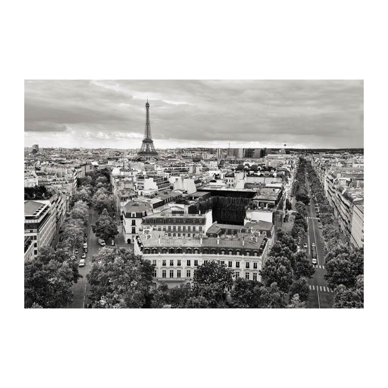 paris noir et blanc photo de la tour eiffel en poster panoramique. Black Bedroom Furniture Sets. Home Design Ideas