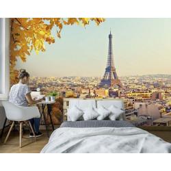 Poster Paris en automne format panoramique