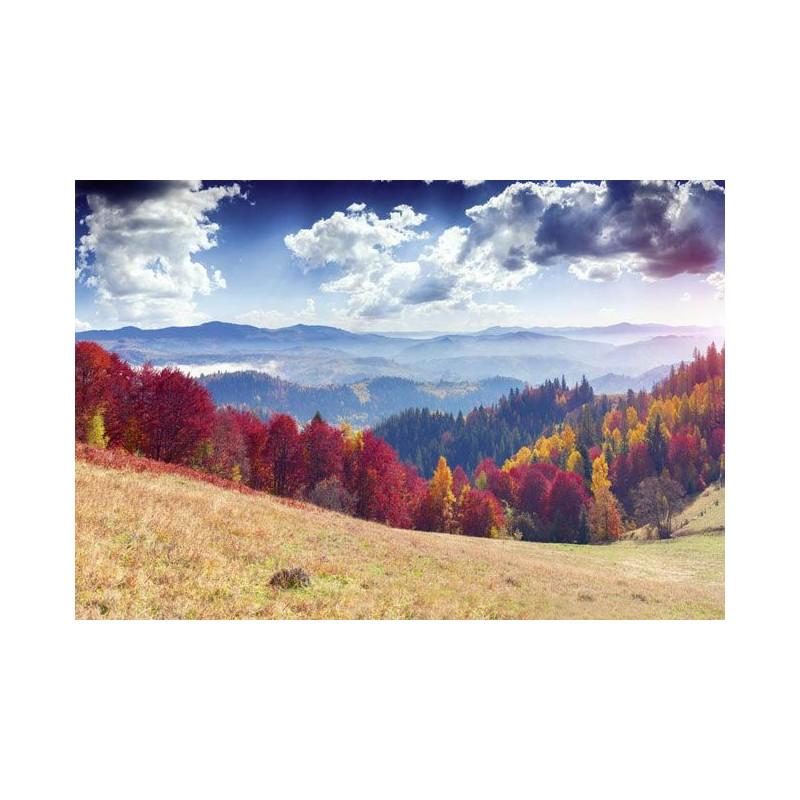 Decor paysage naturel