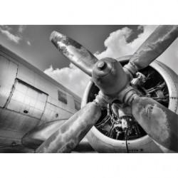 Tableau avion noir et blanc photo design