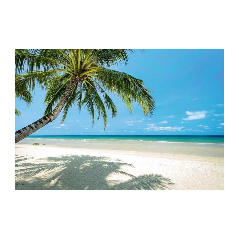 Poster plage de r ve grand format plage paradis - Plage de reve vietnam ...