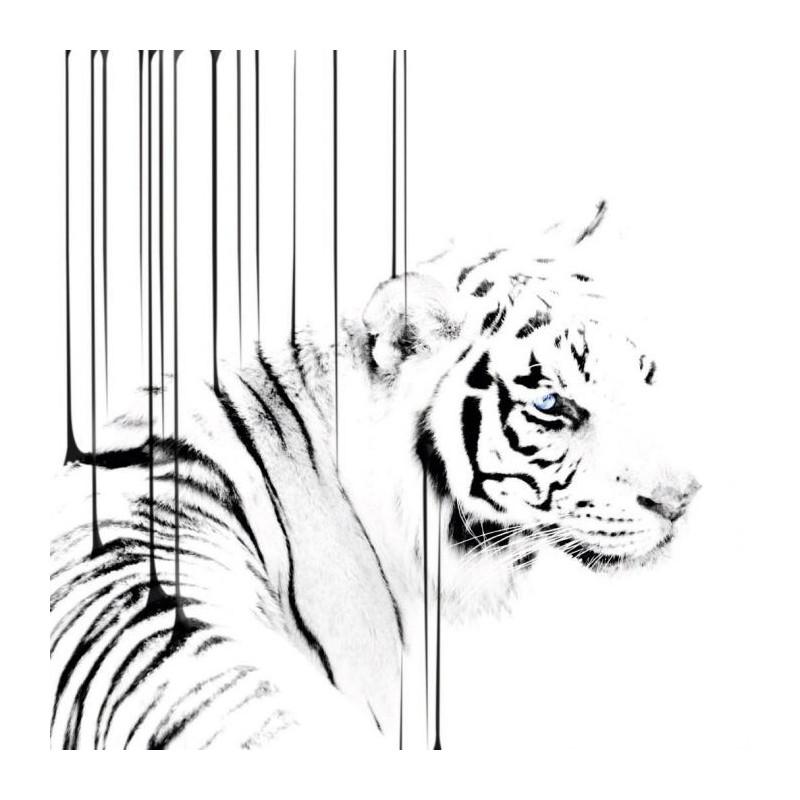 Tableau design tigre en noir et blanc sur support plexi for Tableau imprime sur verre