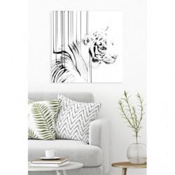 Tableau carré tigre blanc