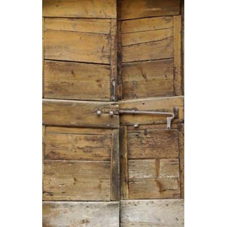 ANTIQUE WOODEN DOOR Privacy screen