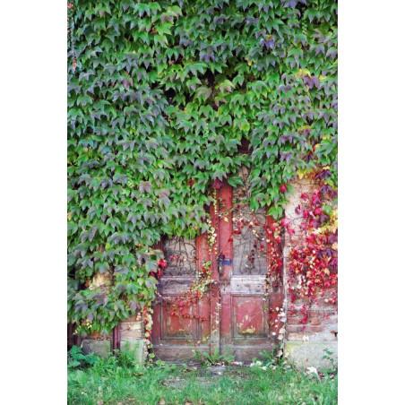 LOCKED DOOR wall hanging