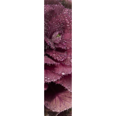 POURPRE wall hanging