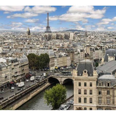 Papier Peint PRINTEMPS A PARIS