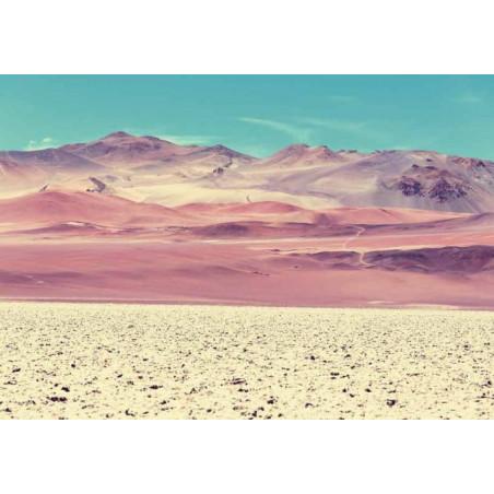 PUNA ARGENTINA canvas print