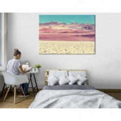 Tableau paysage désert d'Argentine
