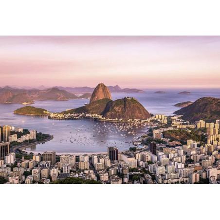 BAY OF RIO poster