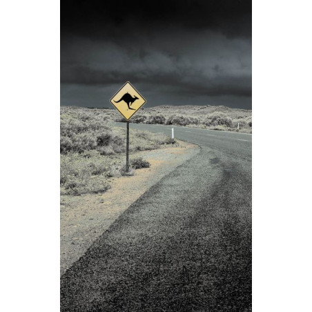 ROAD SIGN wall hanging