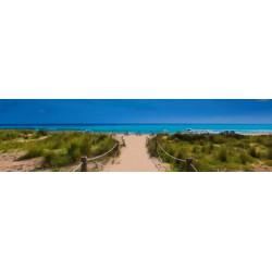 Brise vue paysage plage de l'océan et végétation océanique
